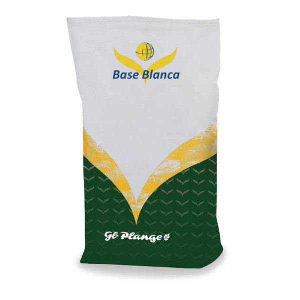 Base Blanca