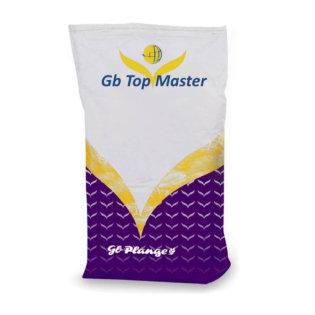Gb Top Master