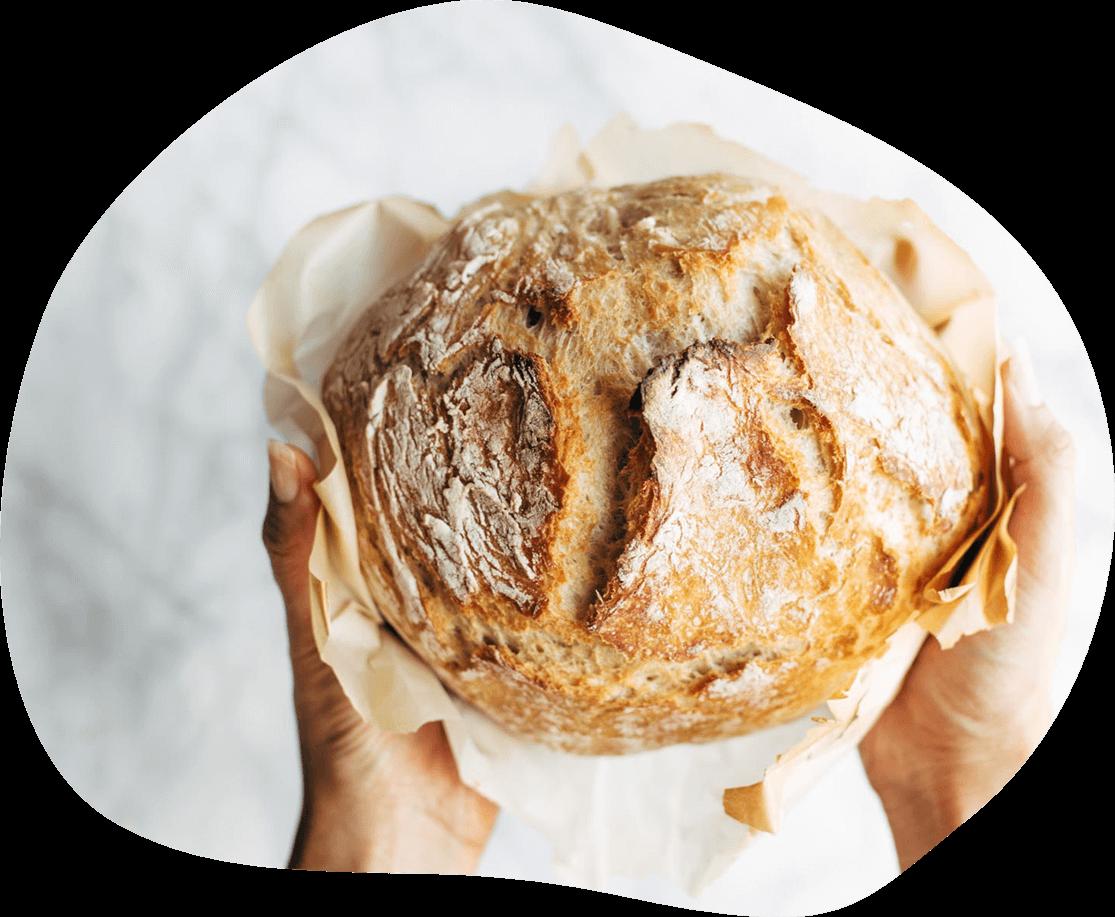 Ingredientes de Panadería